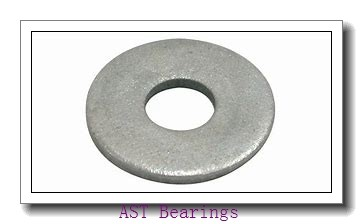 AST AST20 8060 plain bearings