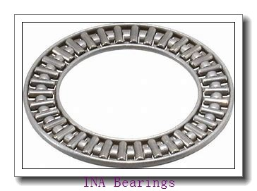INA GE100-DO plain bearings