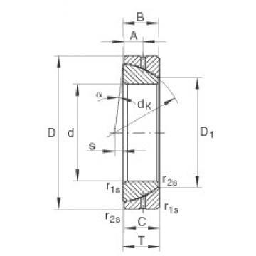 INA GE50-SX plain bearings