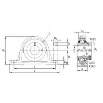 INA RASE65-2143) bearing units