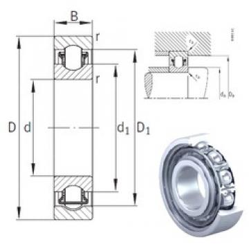 INA BXRE010 needle roller bearings
