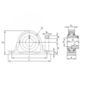 INA RASEY55-JIS bearing units