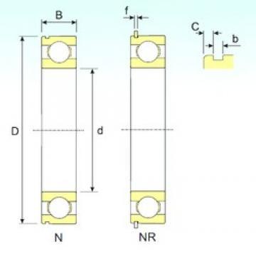 ISB 6004 NR deep groove ball bearings
