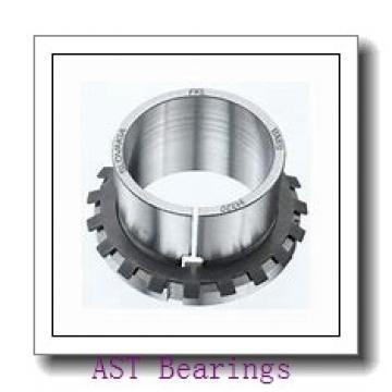 AST HK3016 needle roller bearings