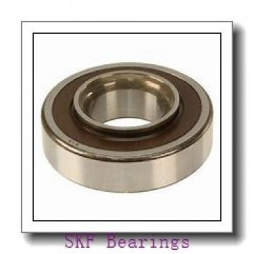 SKF RNA4902 needle roller bearings