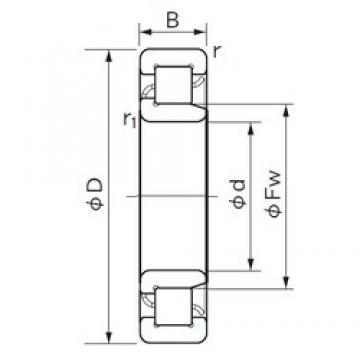NACHI NJ 205 cylindrical roller bearings