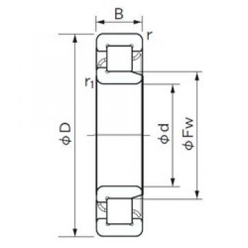 NACHI NJ 2220 cylindrical roller bearings