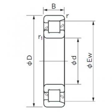NACHI NF 1084 cylindrical roller bearings