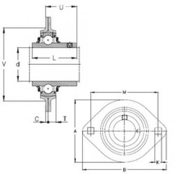 NKE RRTY35 bearing units