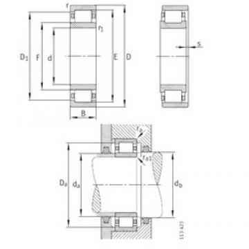 INA 722046100 cylindrical roller bearings
