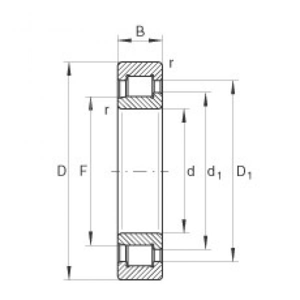 INA SL192319-TB cylindrical roller bearings #3 image